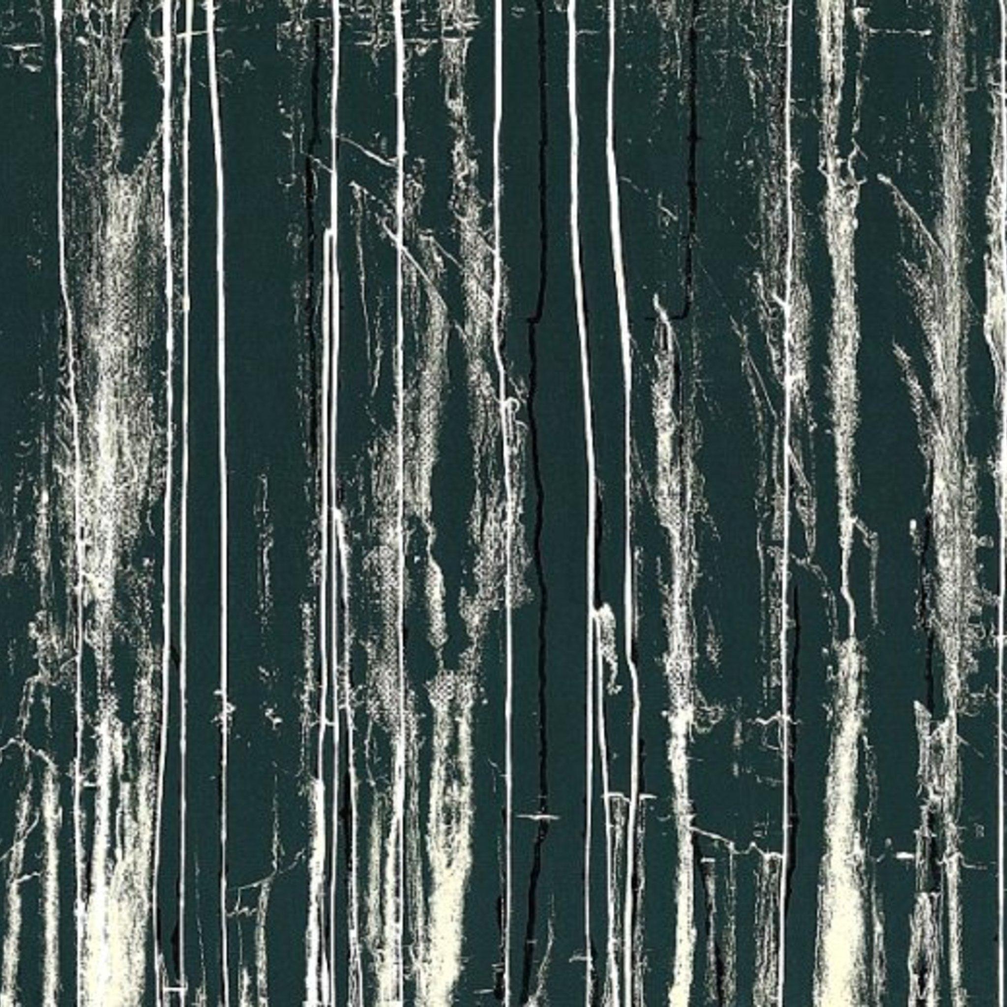 Выставка Яниса Муровскиса «Точка зрения»